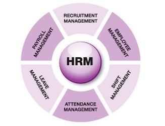 Giới thiệu Anh Việt HRM